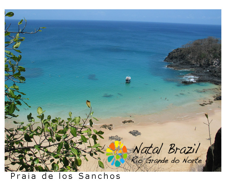 7 Exciting Things to Do in Fernando de Noronha