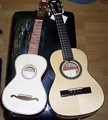 Brazilian guitar Instrument