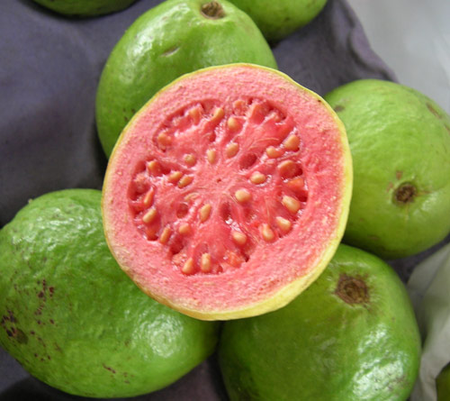 goiaba-fruit-brazil