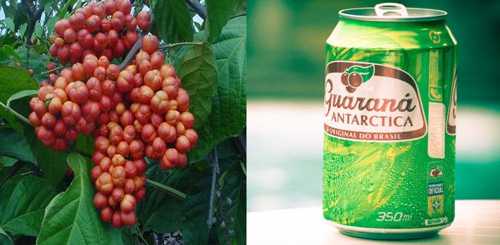 guarana-fruit-and-soda-guarana