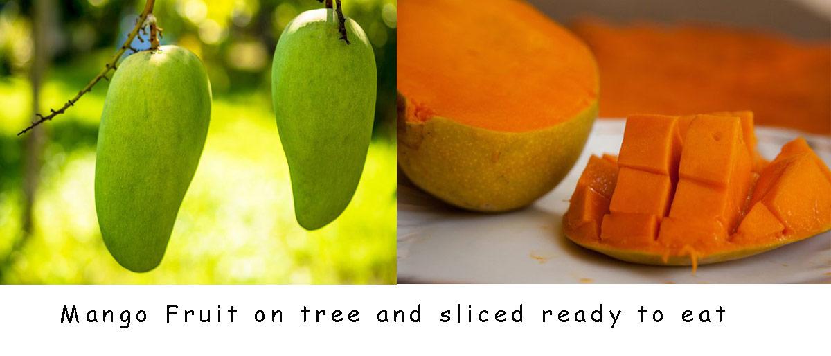 mango-fruit-exotic-brazil